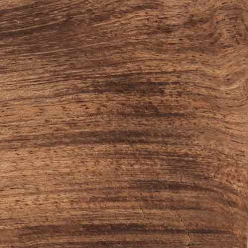 Tasmanian Blackwood wood grain-The Authentic